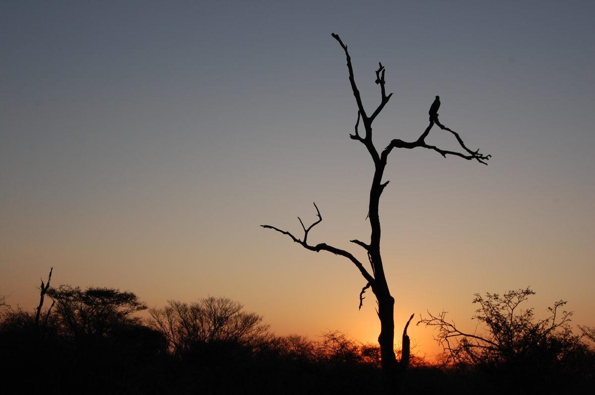 Sun set in Kruger Park