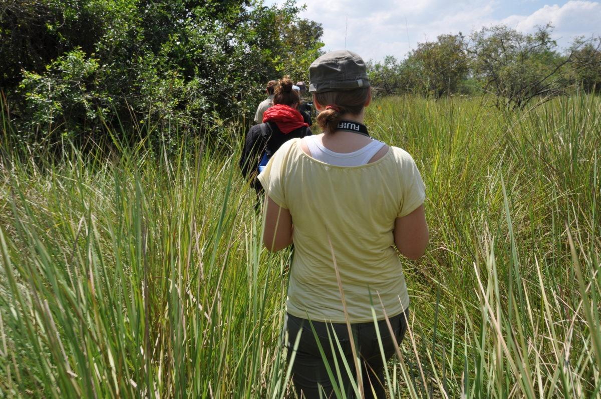 Walking safari - rhino tracking