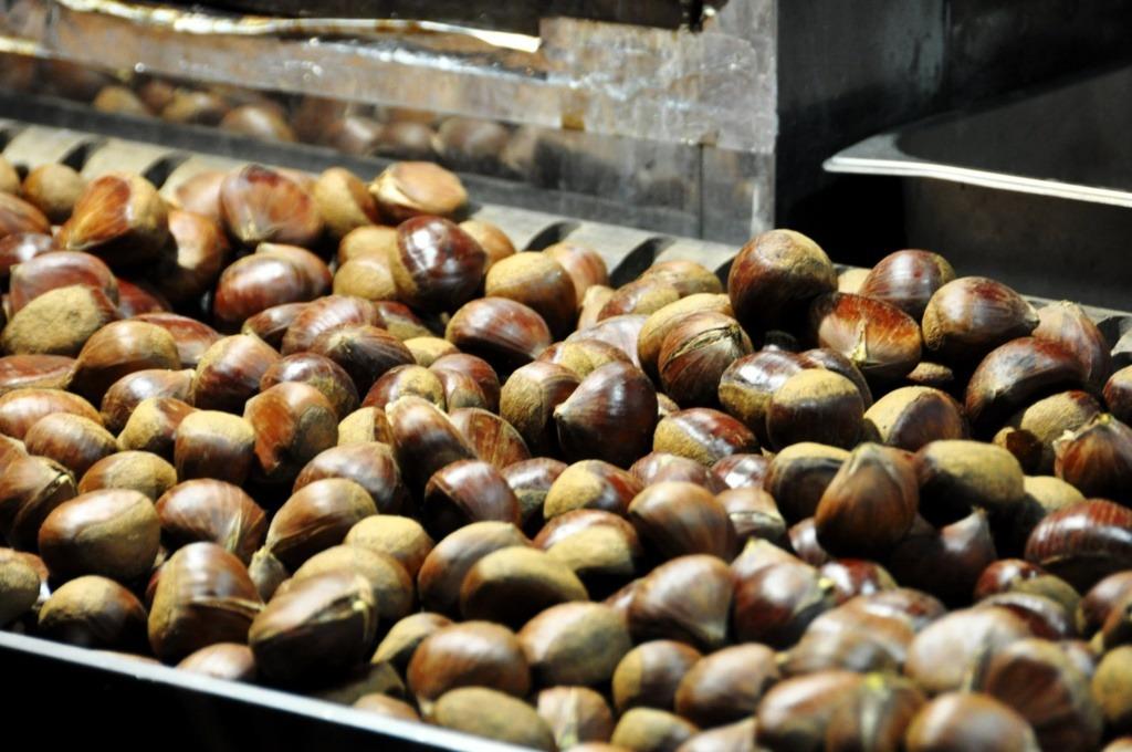 Korea roasted chestnuts