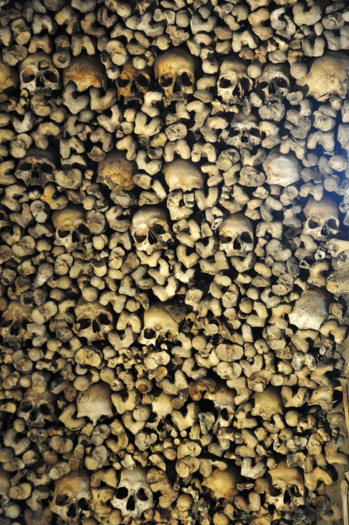 Evora skulls