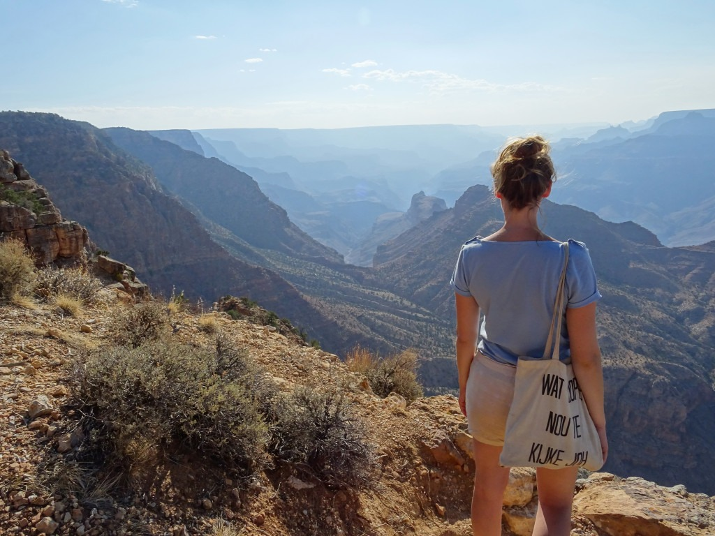 Panoramic view over the Grand Canyon