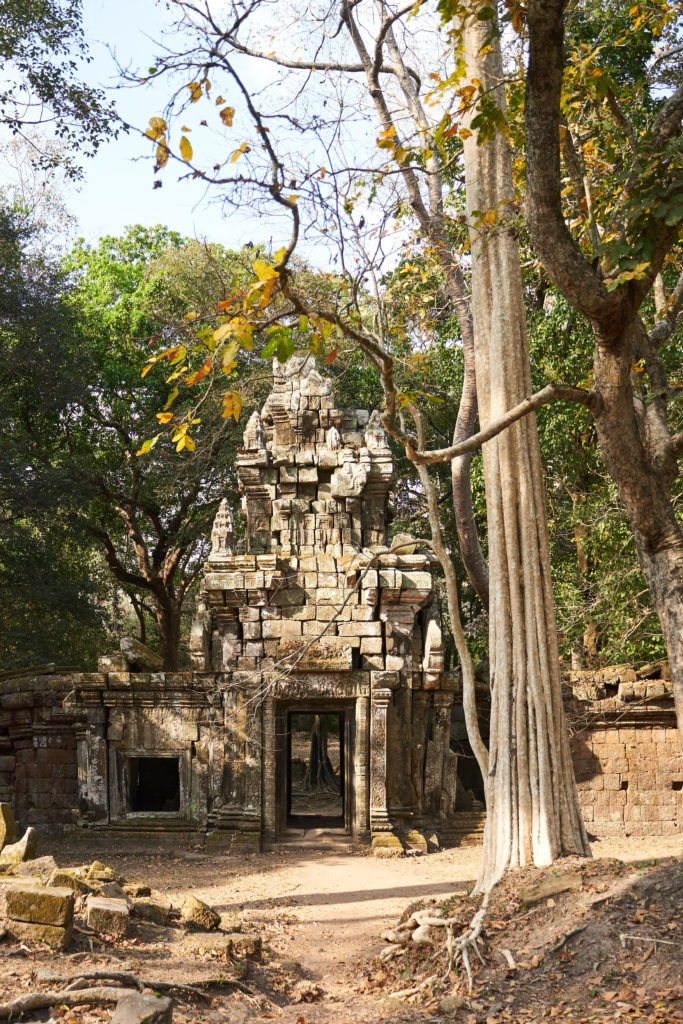 Temple hidden in the forest of Angkor