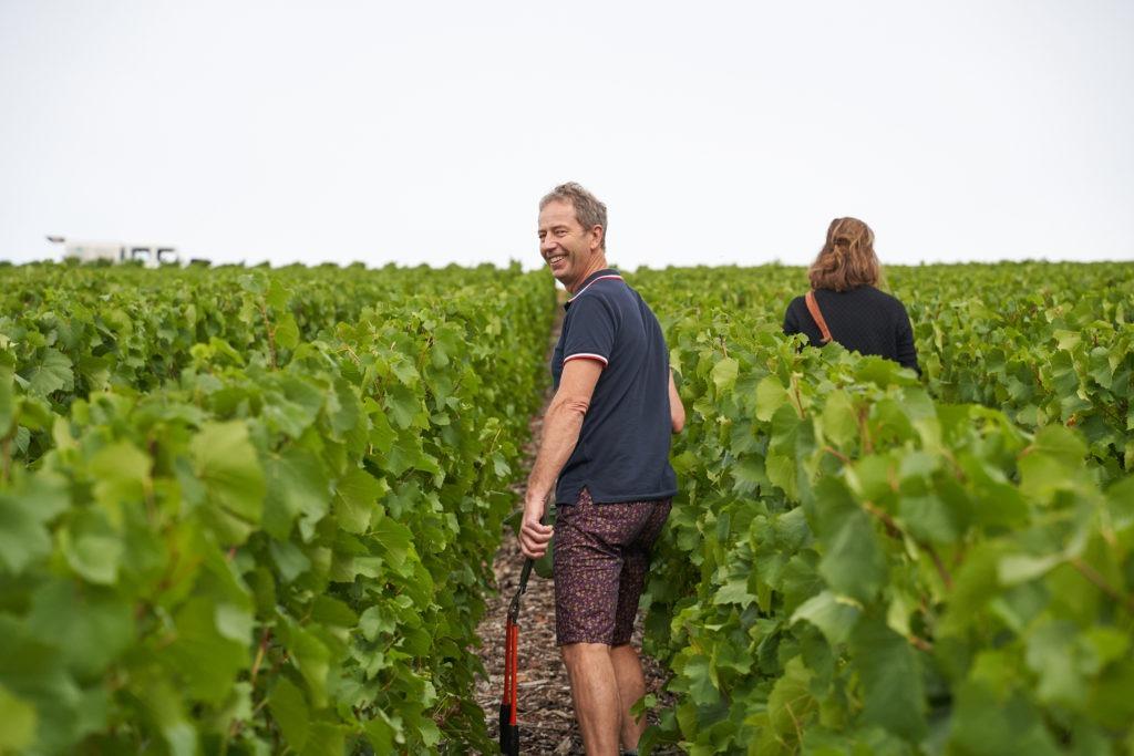 Walking through the vineyard