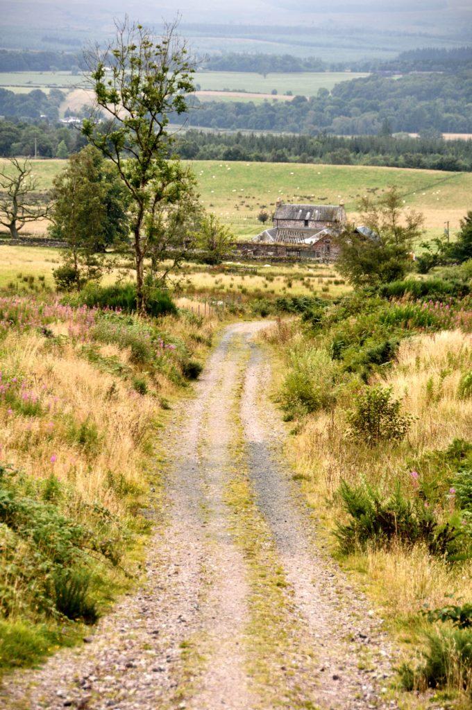 Trail near Drymen on the West Highland Way