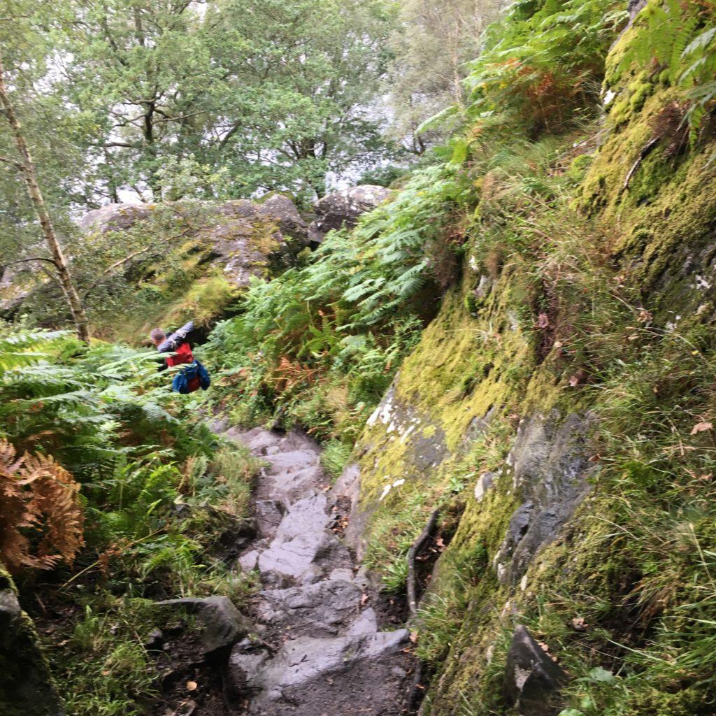 Loch Lomond trail West Highland Way
