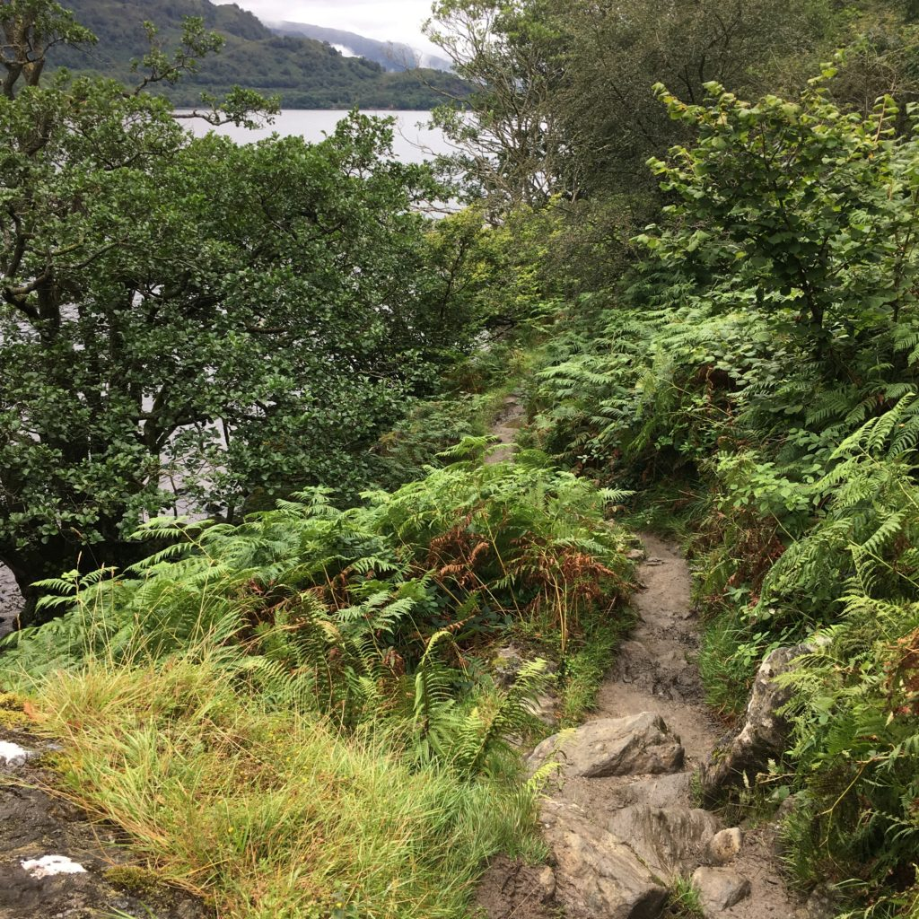 Loch Lomond trail