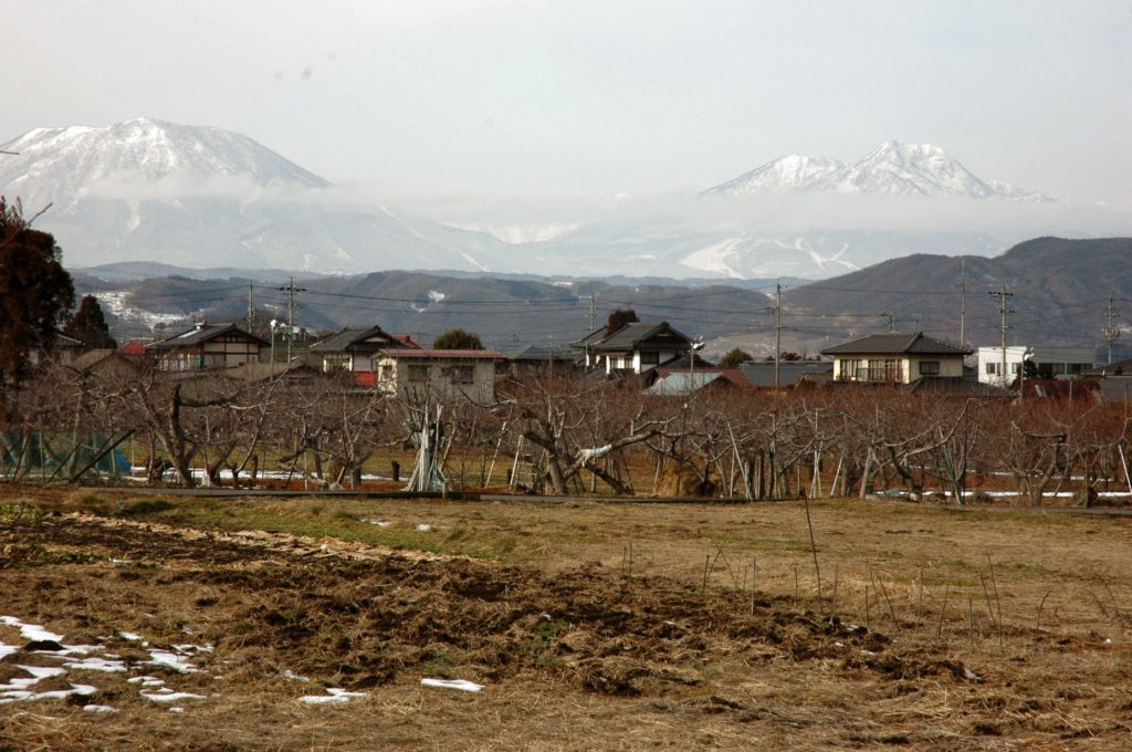 Obuse town and the Japanese Alps