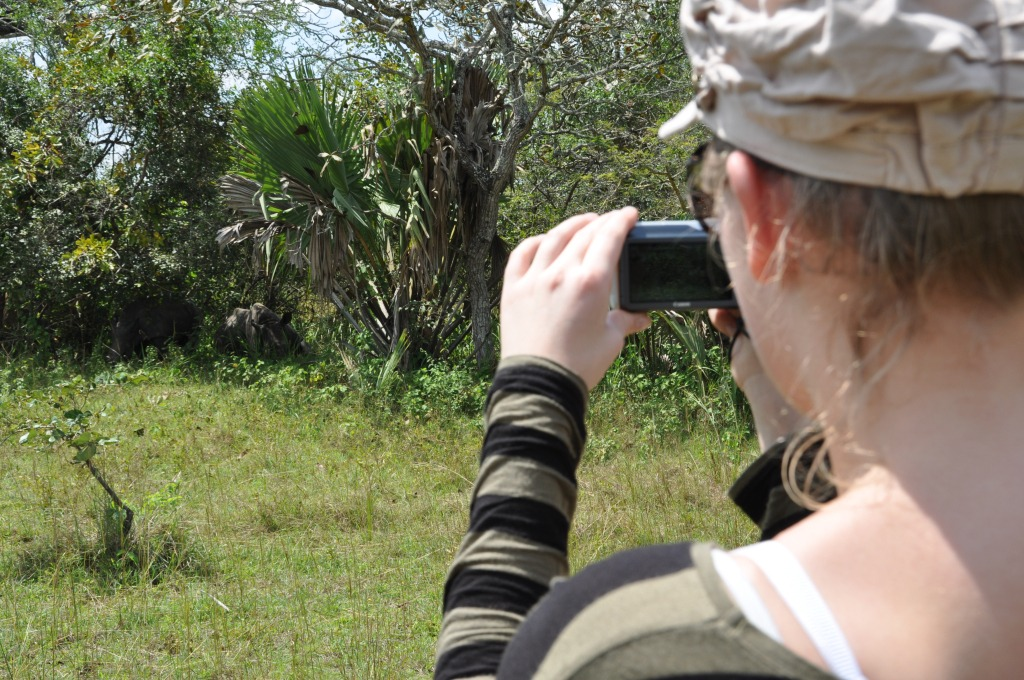 Spotting rhino during a walking safary in Uganda